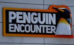 Google Penguin Algorithm Encounter