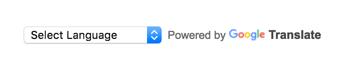 Google Translate widget