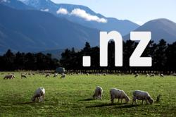 nz domains