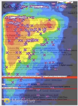 Google heat map 2005