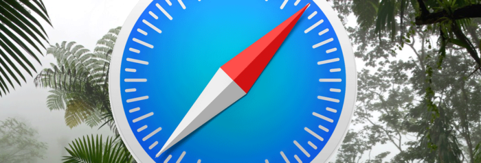 apple safari browser icon