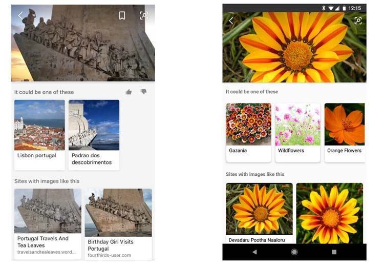 image-showing-bing-vision-search-results